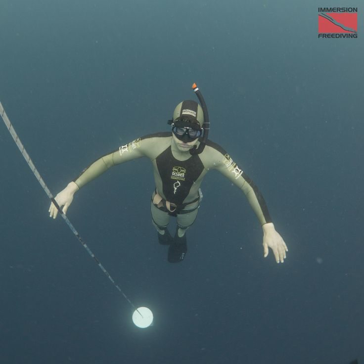 How Breath-Holding, Blood-Doping, Shark-Chasing, Free-Diving & Ketosis Can Reactive Your Body's Most Primal Reflex.    Read more http://www.bengreenfieldfitness.com/2015/11/what-is-freediving/