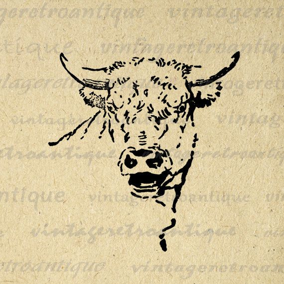 Digital Mad Cow Bull Image Graphic Horns Printable Animal Download Antique Clip Art. High resolution printable graphic. This high quality digital image works well for printing, transfers, tote bags, and other great uses. For personal or commercial use. This digital graphic is high quality at 8½ x 11 inches large. Transparent background version included with every digital image.