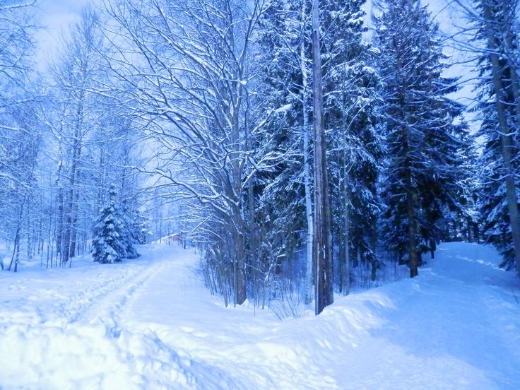 """Saunakallio,Finland  """"Darkness And Frost"""""""