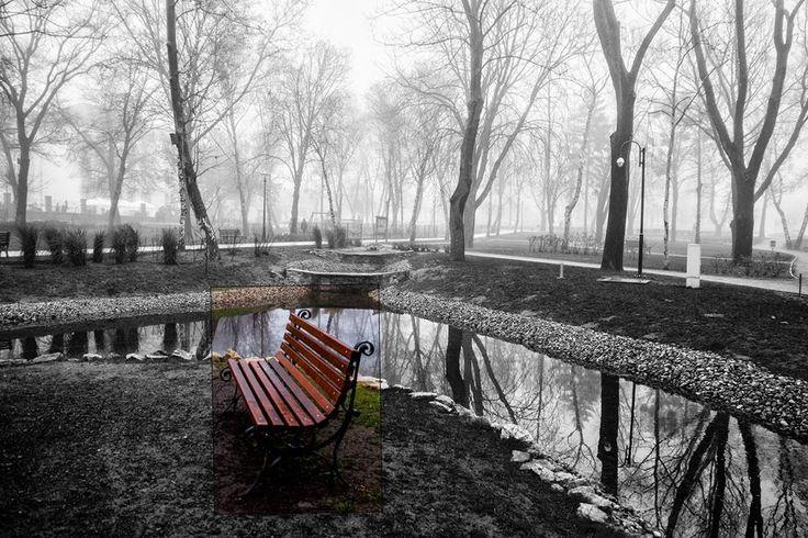 """Skobrák András """"Akkor a leghosszabb a tél Ha már az ember nem remél Ha a holnap csak ködös kép Tövissel barázdált vidék."""" /Ákos/ Több kép Andrástól: https://www.flickr.com/photos/106287128@N03/"""