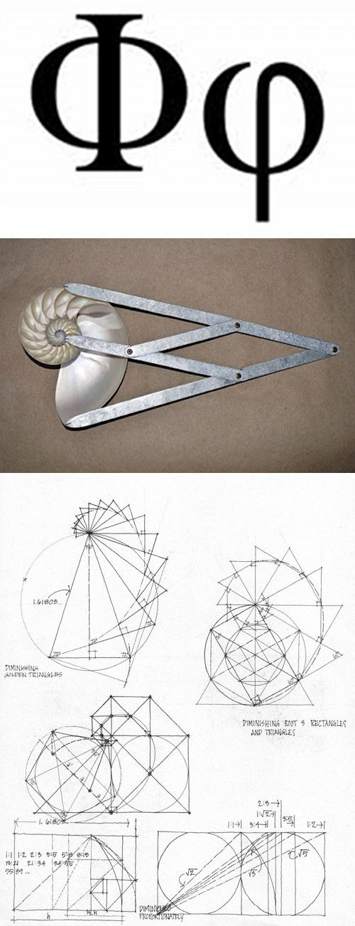 geometry of Fibonacci.