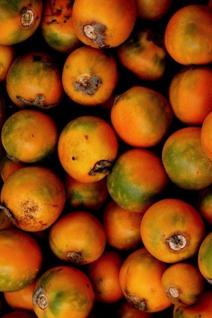 Lulos - fruta colombiana