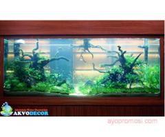Akvorista Water Dekoration #ayopromosi #gratis http://www.ayopromosi.com