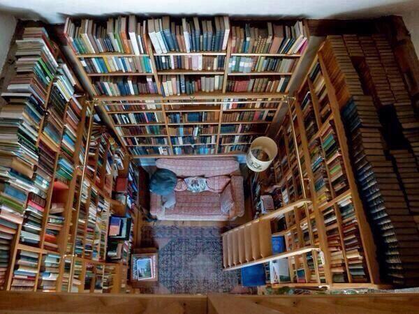 İşte ideal kitap okuma yeri!