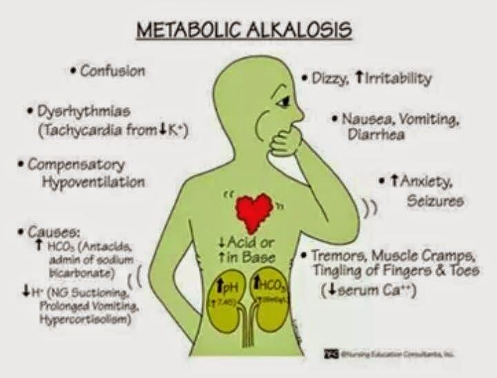 best 20+ metabolic acidosis ideas on pinterest | respiratory, Skeleton