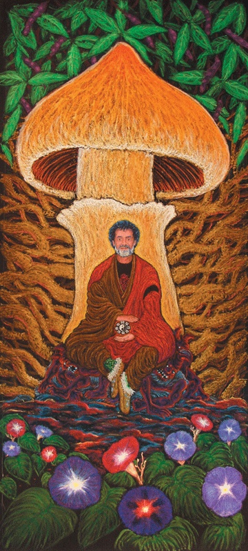 Terence Mckenna- Stoned Ape 3