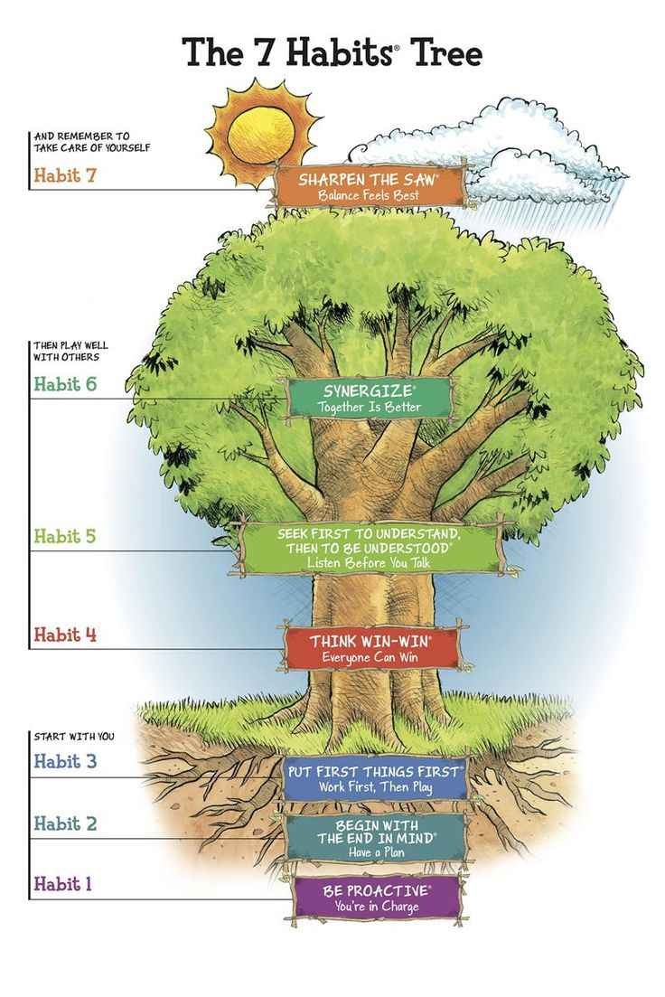 """The 7 Habits Tree. From """"The 7 Habits of Happy Kids"""" by Sean Covey."""