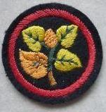 Ranger Beech Patrol Emblem.
