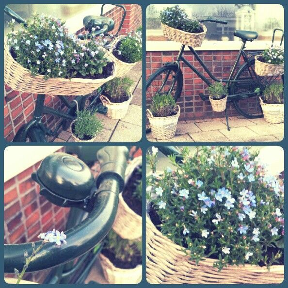 Idea from pinterest .. Did it ! #greenbike #flowerbike