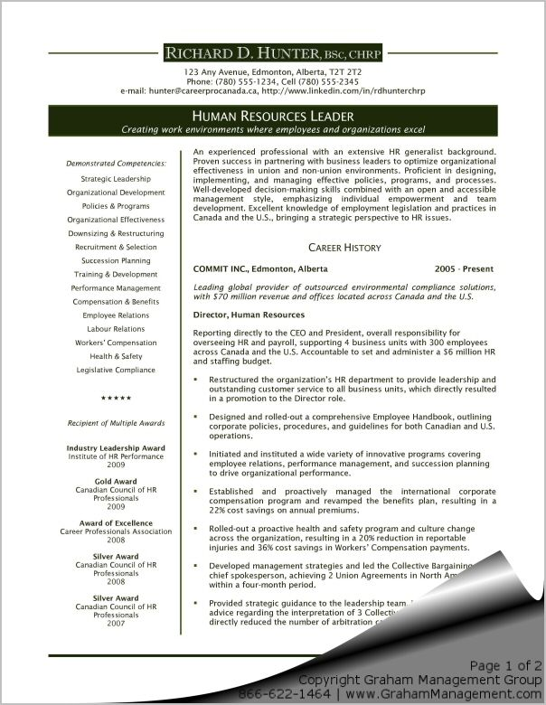 Executive Resume Templates Marketing Executive Resume Example