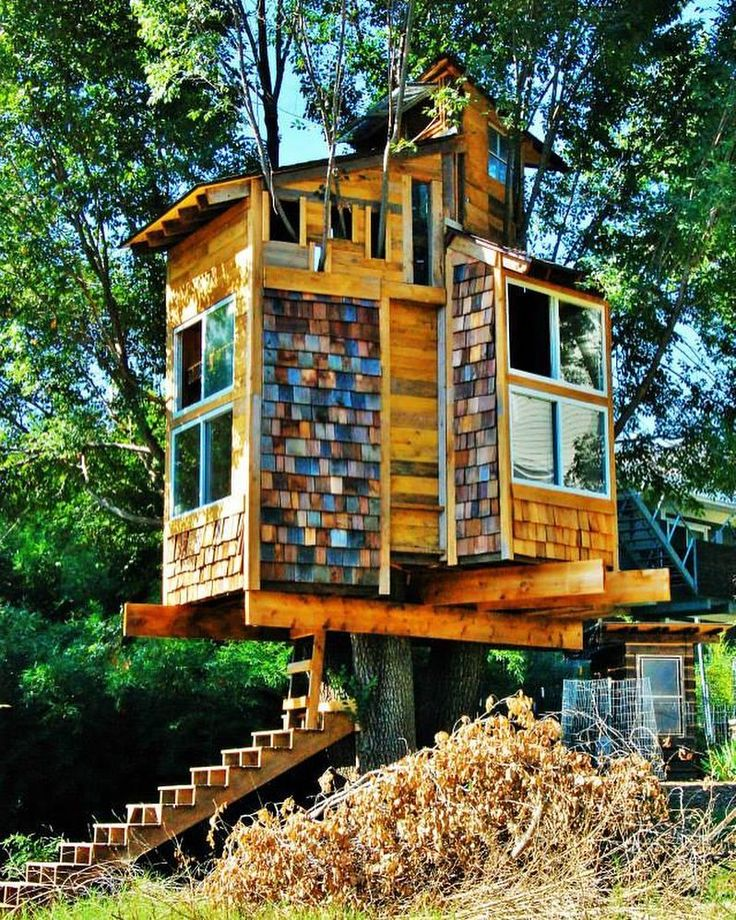 Treehouse Apartments: 4707 Best Images About Tree Houses On Pinterest