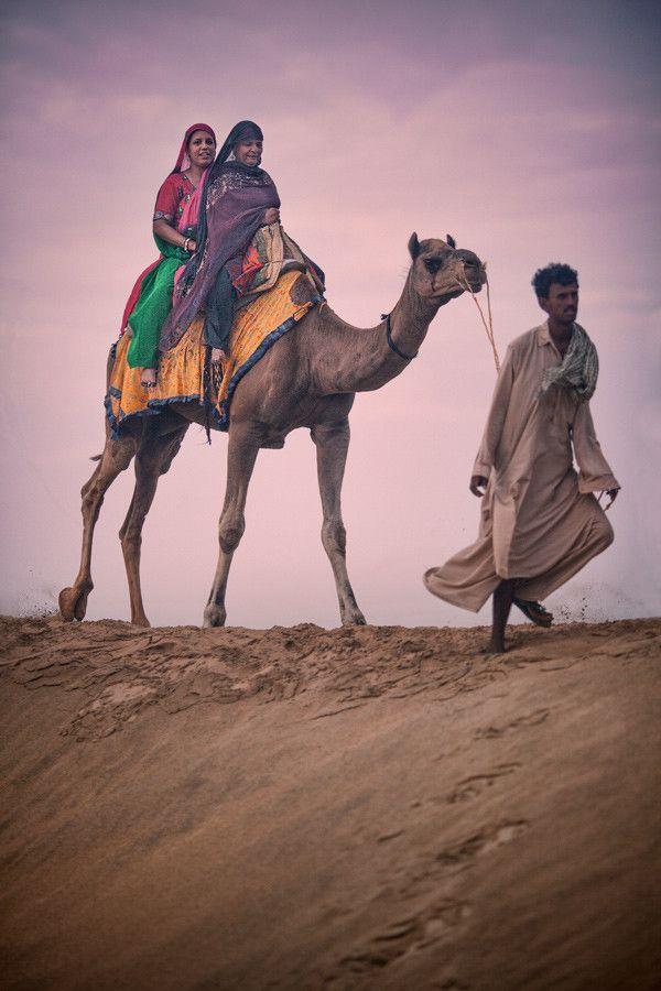 156 best ideas about Desert Life on Pinterest | Dubai ...  156 best ideas ...