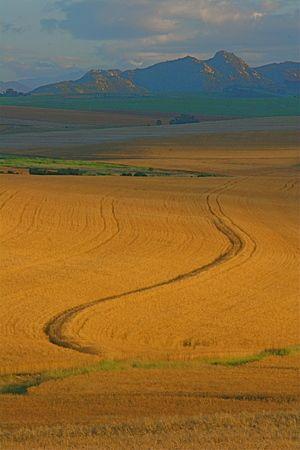 #Malmesbury - #SouthAfrica