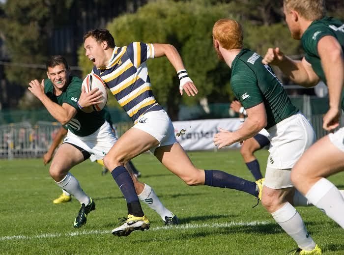 Cal rugby crushes California Maritime for fifth straight win