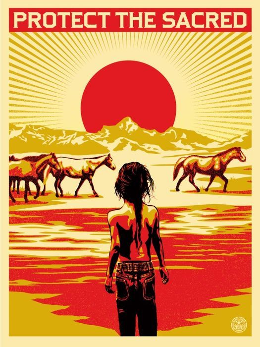 En ce moment aux enchères #Catawiki: Shepard Fairey (OBEY) x Aaron Huey - Protect The Sacred (+ 5 autocollants o...