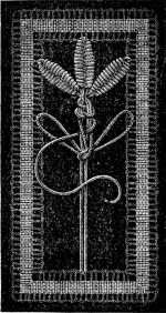 FIG. 713. INSERTION WITH LEAVES WORKED IN DARNING STITCH.