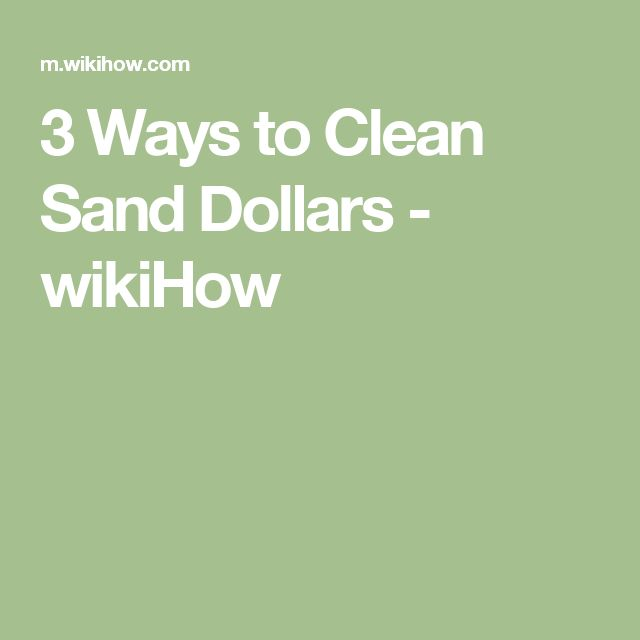 3 Ways to Clean Sand Dollars - wikiHow
