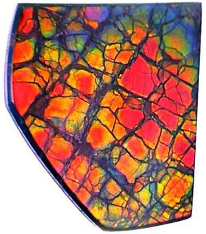 Ammolite is a fossilized ammonite shell shows fantastic iridescent colors. Like Opal, Ammolite is too soft for wear in most jewelry (although pendants and earrings work out very well.)These beauties come from a single deposit in southern Alberta, Canada.