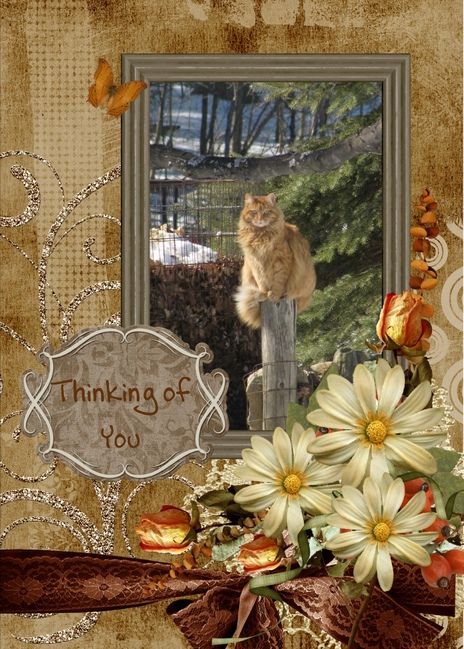 Do you need to let someone know you are thinking of them?  Click on one of these cards and send a real card in the mail to your customers and friends.  http://createcards.info or http://helenian.info  Skype: ian.kingwill  M: 61416163955  E: ian@helenian.ws