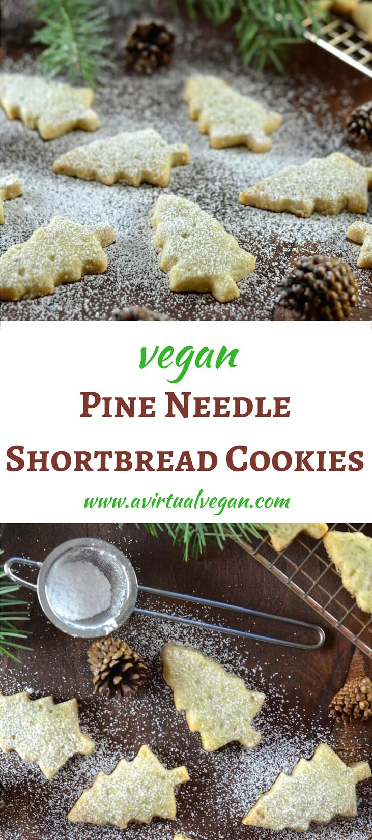 Melt in your mouth Pine Needle Shortbread Cookies. A twist on an old favourite with just a hint of piney, citrusy flavour. Delicate, delicious & sure to impress! via @avirtualvegan