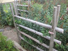 Rusopajuanervoa on ollut keväästä saakka kurissa pitämässä  heinäseipäistä tehty aita. Todettiin tekele hyväksi ratkaisuksi, joten nyt teh...