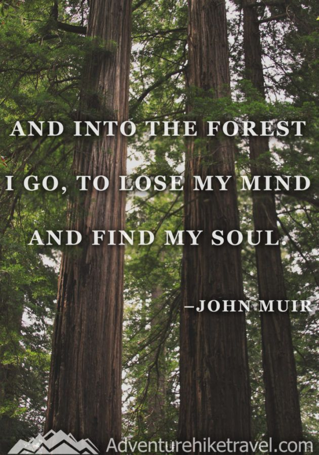 25 John Muir Quotes To Inspire Wanderlust With Images John