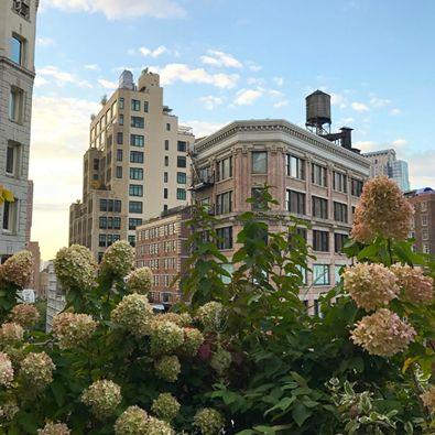 Enjoying the cool, crisp Fall air on our Penthouse Terrace. Photo: jbailly