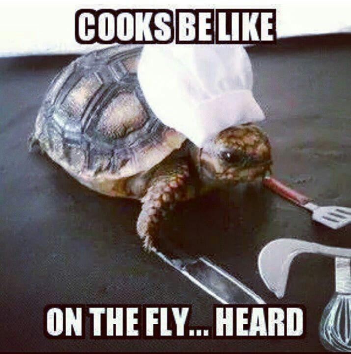 Restaurant Kitchen Jokes best 25+ server humor ideas on pinterest | restaurant humor