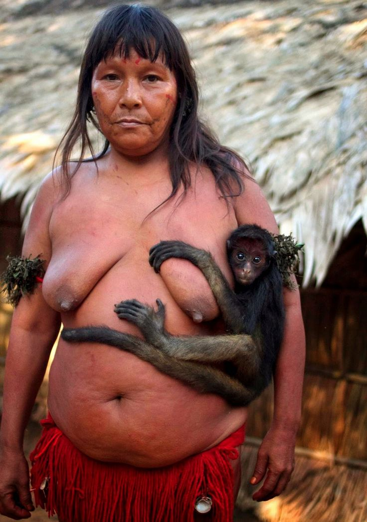The Yanomami are the largest relatively isolated tribe in South America. They live in the rainforests and mountains of northern B...