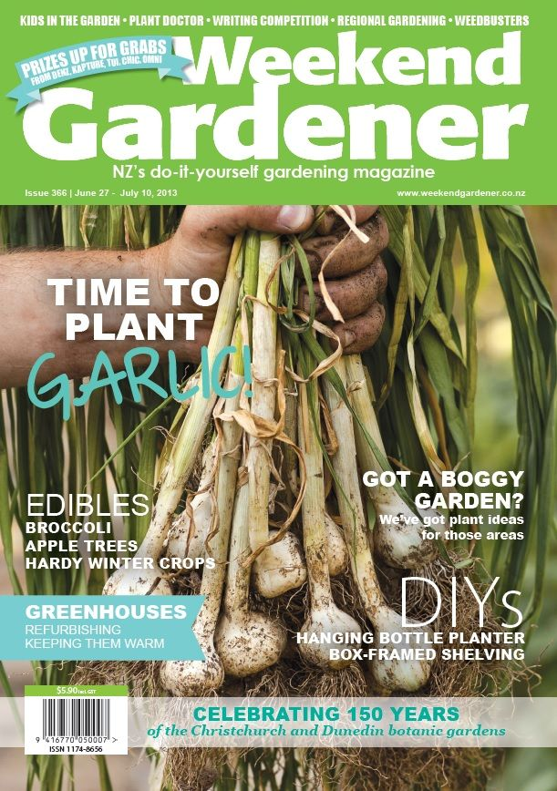 WG366 is all about garlic, and advice on how to grow the super food. Also, we have solutions for your boggy gardens and teach you how to make a hanging bottle planter in this fortnight's DIY project.