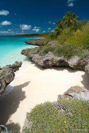 Lifou, New Caledonia  Instagram: @CruiseLife_au Facebook: CruiseLifeAustralia  #MyCruiseLife #CruiseLifeAustralia #CruiseLifeReviews #PortsOfCall #ShoreTours #Cruise