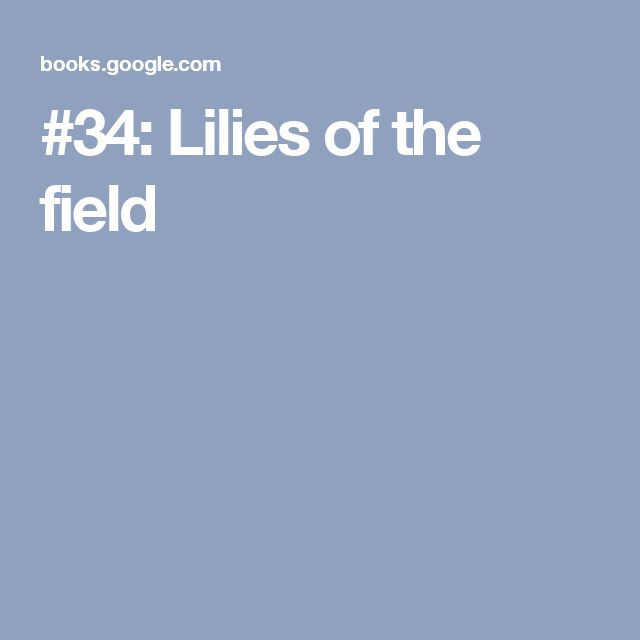 #34: Lilies of the field