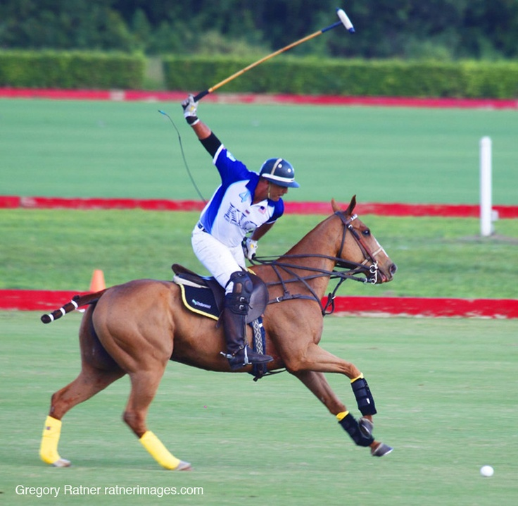 50 Best Polo Images On Pinterest