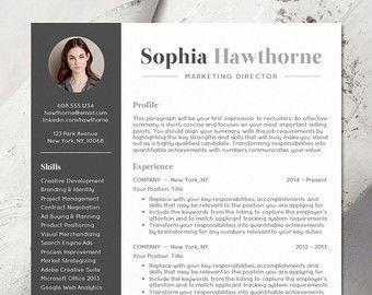 Best CvS Images On   Resume Templates Resume Design