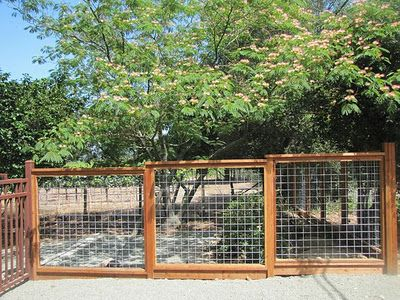 wood and wire fence for side yard with climbing vines to block view of neighbors privacy. Black Bedroom Furniture Sets. Home Design Ideas