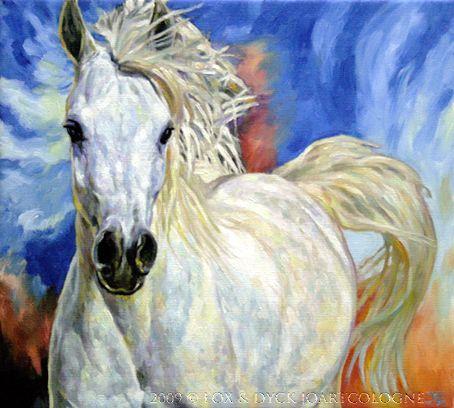 White Arabian Horses | White Arabian Horse