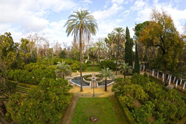 El Parque de María Luisa, Sevilla by Patryk Muntowski, via Behance