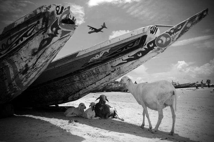 A orillas de Dakar » Gabriel Tizón