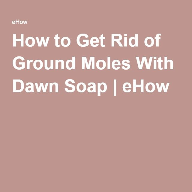 How To Get Rid Of Ground Moles With Dawn Soap Soaps How
