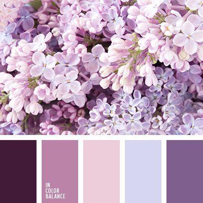бледно-голубой, бледно-лиловый, бледно-розовый, бледно-фиолетовый, васильковый цвет, лиловый цвет, оттенки фиолетового, пурпурный, розовый, темно-пурпурный, темно-фиолетовый.