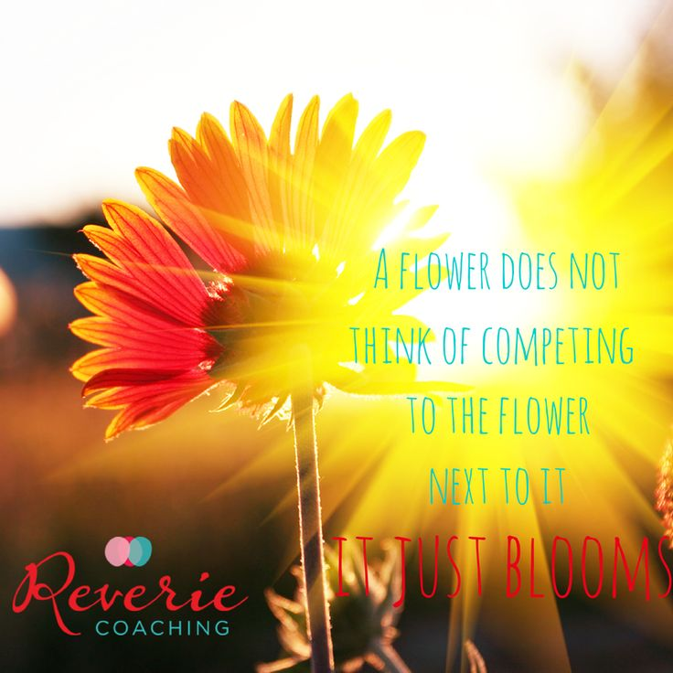A flower does not think of competing to the flower next to it - it just blooms. http://www.reveriecoaching.com/2014/04/is-it-even-worth-it-what-to-do-when-comparisonitis-hits/ #Comparisonitis #competition