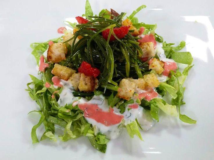 Foto dell'insalata di agretti e lattuga