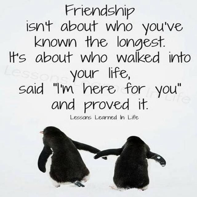 28 best images about friendship quotes on Pinterest   Friendship ...