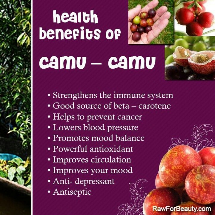 Their extraordinarily high Vitamin C content is the berry's claim to fame, but camu camu is also an excellent source of calcium, phosphorus, potassium, iron, beta carotene, amino acids and some powerful phytochemicals.