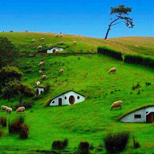 The hobbit  Matamata, New Zeland