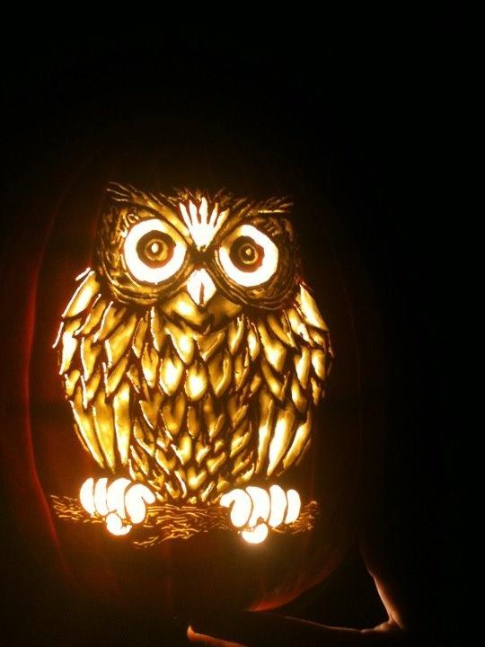 Best ideas about owl pumpkin on pinterest