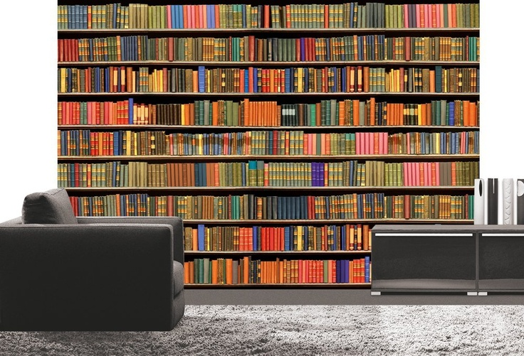 Platin art wall mural deco wall library home for Bookshelf wall mural