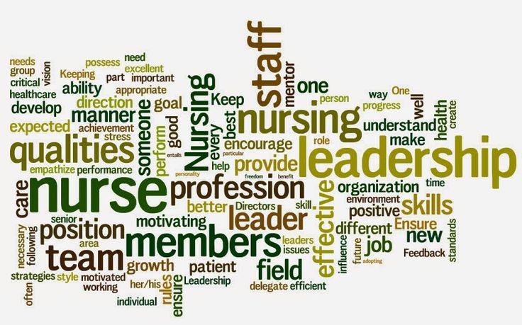 STUDENT NURSING LEADERSHIP Best program-NSNA National Student Nurses Association
