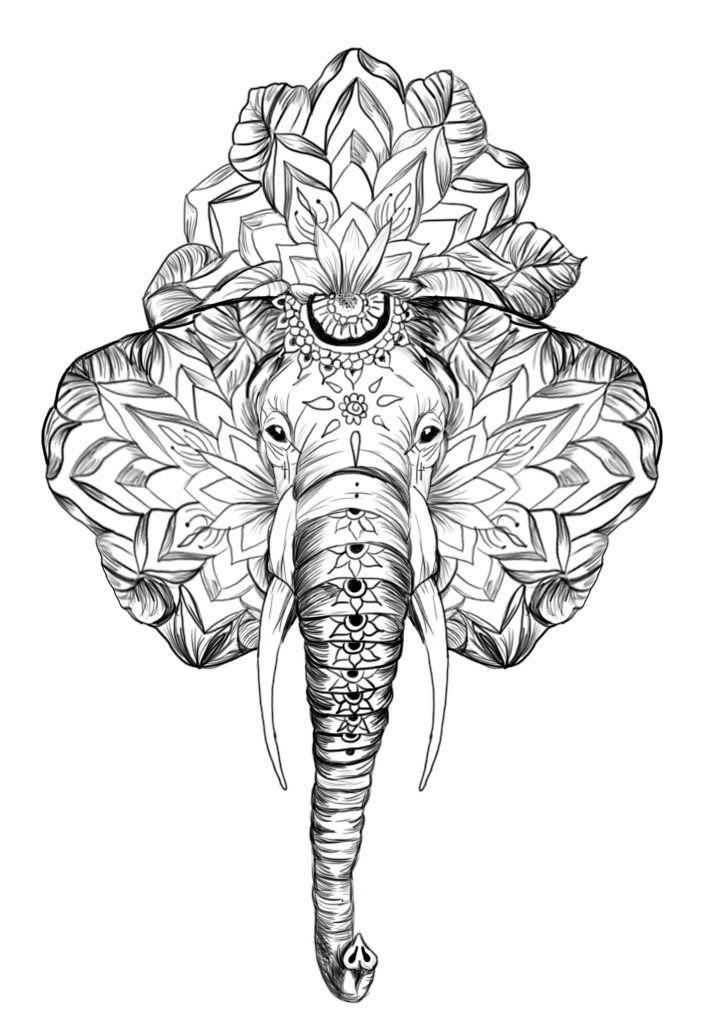 Propuesta boceto sketch de tatuaje tattoo elefante con ...