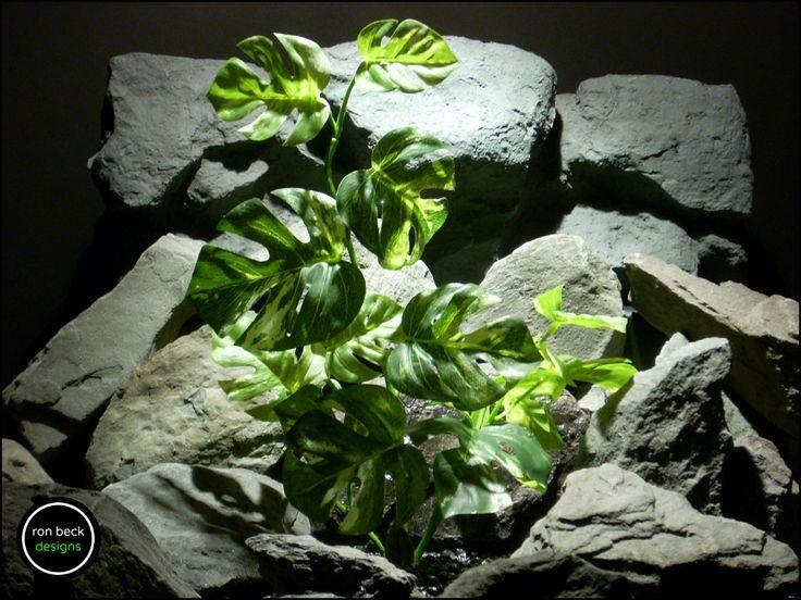 silk reptile terrarium plant: monstera leaves variegated from ron beck designs. ronbeckdesigns.com | ebay | etsy. #ronbeckdesigns #gotplants? #aquarium #reptile #plants #decor #succulents #artificial